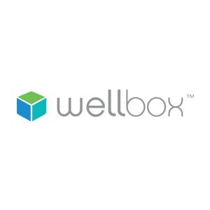 https://www.anelto.com/wp-content/uploads/2021/08/wellbox-logo.jpg